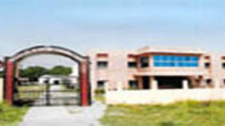 Institute of Business Management, Darbhanga