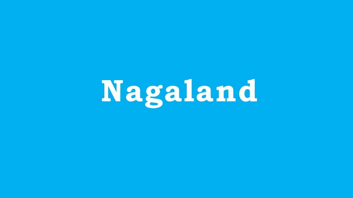 Engineering Colleges in Nagaland