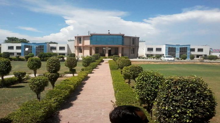 Apex Institute of Polytechnic