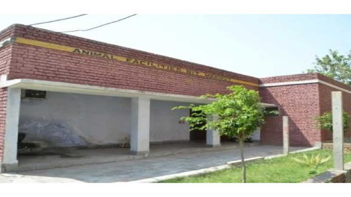Bharat Institute of Technology School of Pharmacy